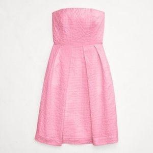J. Crew Pink Lorelei Embossed Cotton Dress 12